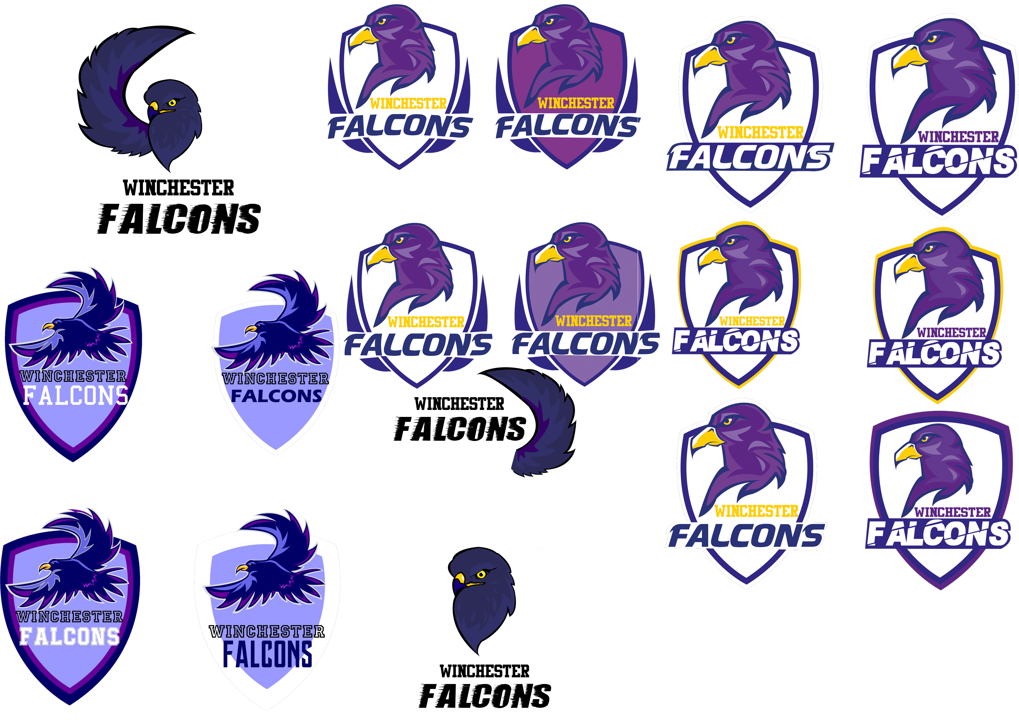 logofalconsoptions