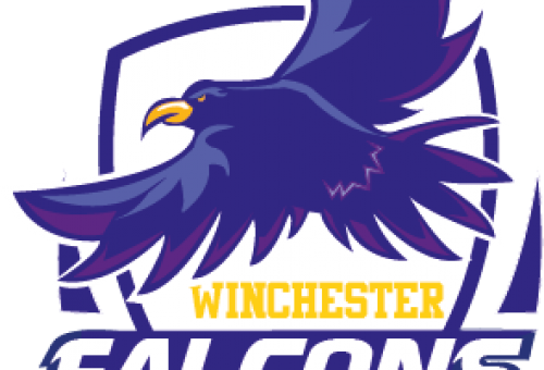 falconssocietyfinallogo